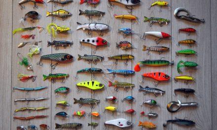 Les bons conseils pour la pêche au leurre